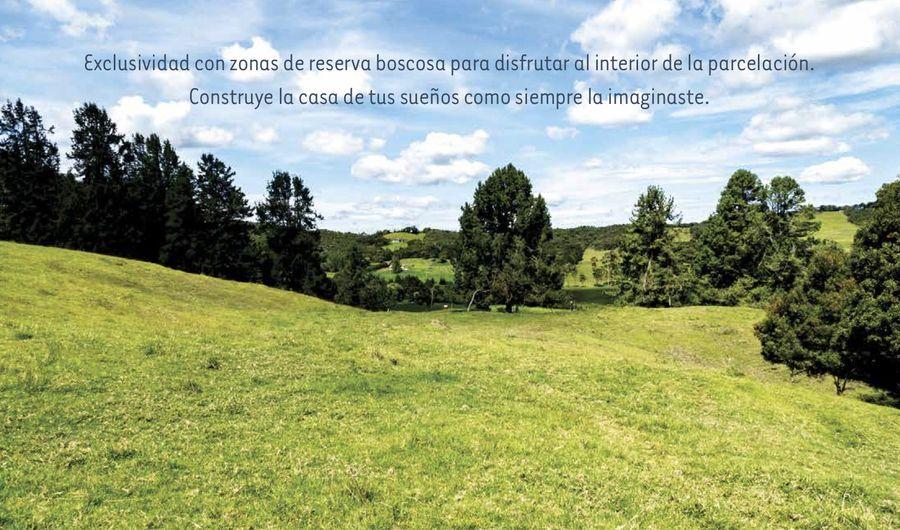Exclusividad con zonas de reserva boscosa Altos de Bracamonte